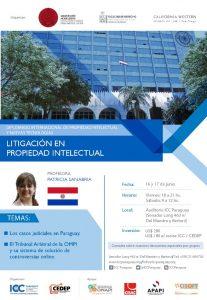 Litigación en propiedad intelectual